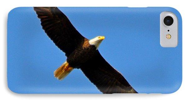 Best Bald Eagle On Blue Phone Case by Jeff at JSJ Photography