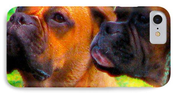 Best Friends Dog Photograph Phone Case by Laura Carter