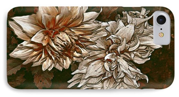 IPhone Case featuring the photograph Betty's Beauty 1 by Don Wright
