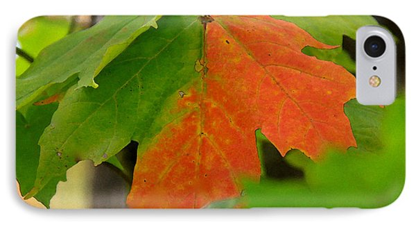 IPhone Case featuring the photograph Between Seasons by Susan Crossman Buscho