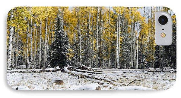 Between Seasons IPhone Case by Tamara Becker