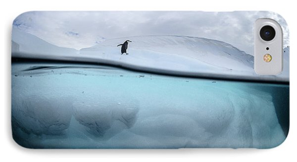 Penguin iPhone 7 Case - Between Two Worlds - Facing Change by Justin Hofman