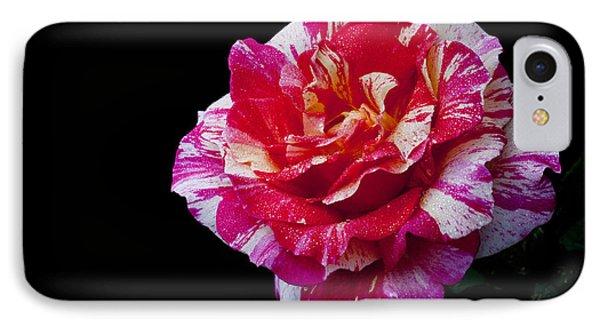 Bicolour Beauty Phone Case by Doug Norkum