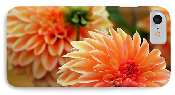 Big And Bold IPhone Case by Jeanette C Landstrom