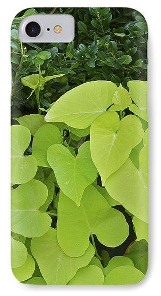 Leaves IPhone Case by Stuart Hicks