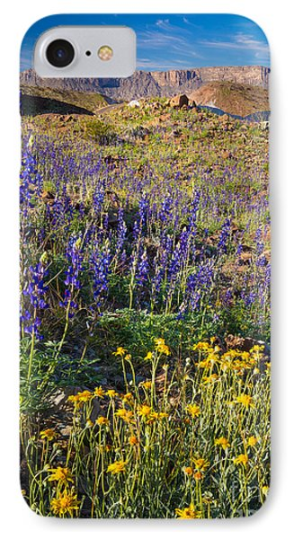Big Bend Flowers IPhone Case