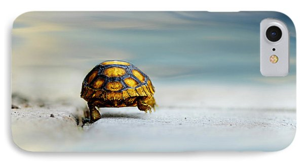 Turtle iPhone 7 Case - Big Big World by Laura Fasulo