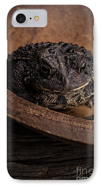 Big Black Toad IPhone Case by Edward Fielding