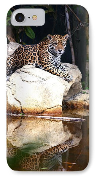 Big Cat IPhone Case by Diane Merkle