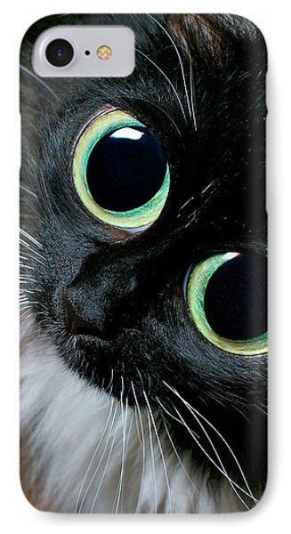 Big Eyed Cat Begging Portrait Phone Case by Berkehaus Photography
