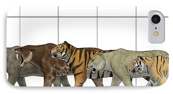 Big Felines Size Chart Phone Case by Vitor Silva