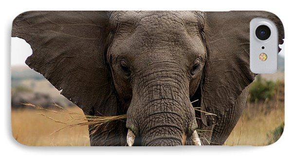 Big Gray IPhone Case by Debi Demetrion