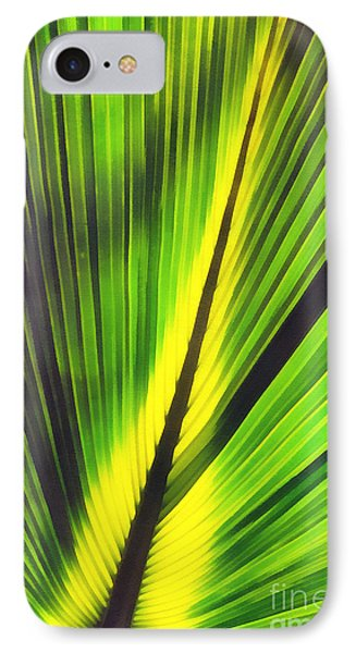 Big Green Palma Leaves  IPhone Case