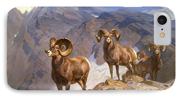 Big Horn Sheep On Wilcox Pass IPhone Case by Mountain Dreams