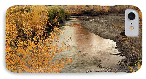Big Lost River In Autumn Phone Case by Leland D Howard