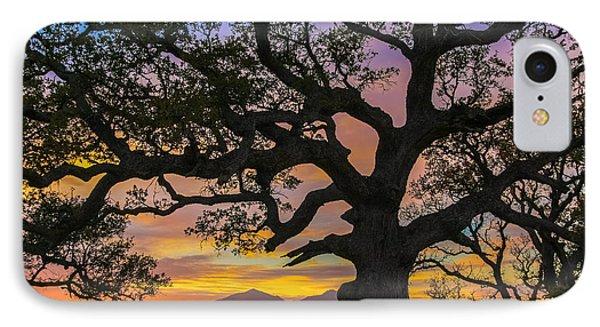 Big Oak IPhone Case by Marc Crumpler
