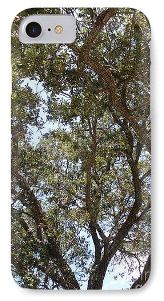 Big Oak Tree IPhone Case by Joseph Baril