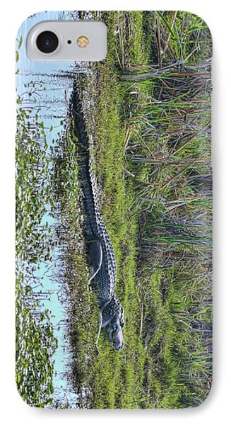 IPhone Case featuring the photograph Big Old Gator by Gregory Scott