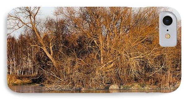 Big Tree Colored Coloured #orange By Sun On January 2  2015 Besides The Creek Of Enkoping IPhone Case by Leif Sohlman