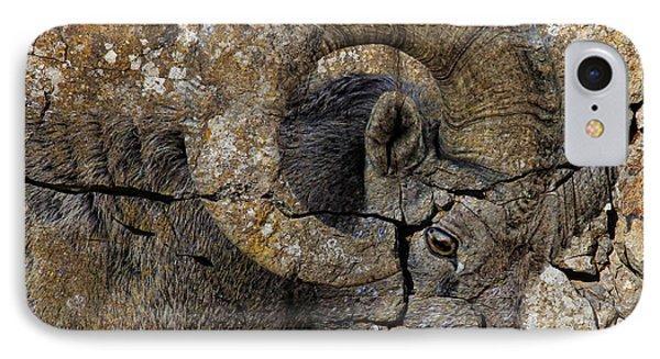 Bighorn Rock Art IPhone Case by Steve McKinzie