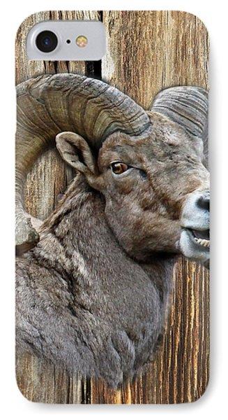 Bighorn Sheep Barnwood IPhone Case by Steve McKinzie
