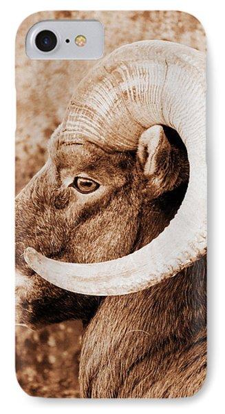 Bighorn Sheep Profile Phone Case by Ramona Johnston