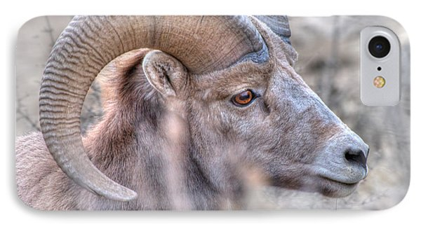 Bighorn Soft Phone Case by Britt Runyon