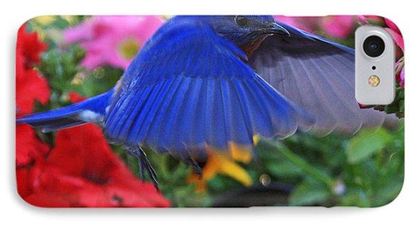 Billy Bluebird Landing IPhone Case by Luana K Perez