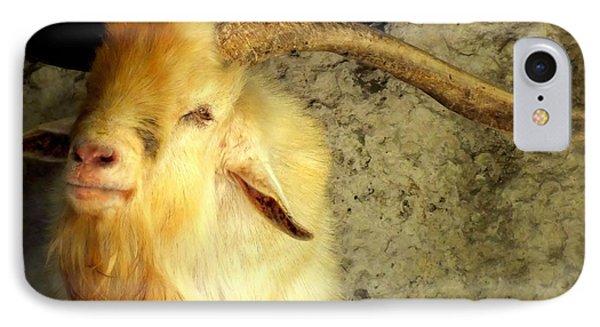 Billy Goat Gruff Phone Case by Karen Wiles