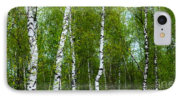 Birch Forest Phone Case by Hannes Cmarits