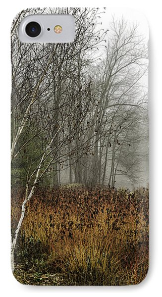 Birch In Winter IPhone Case by Fran Gallogly