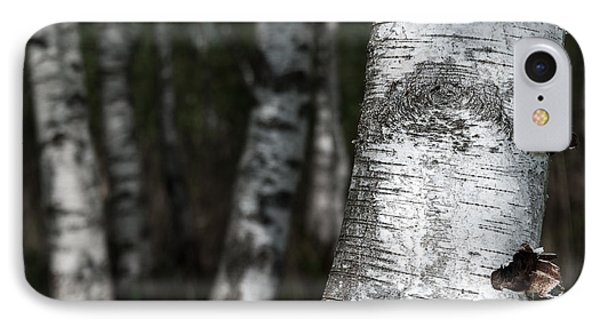 birches II Phone Case by Hannes Cmarits