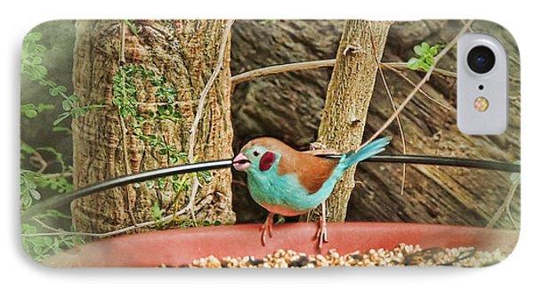 Bird And Feeder Phone Case by Joan  Minchak
