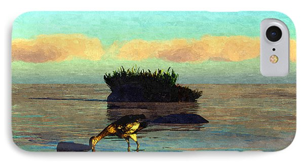 Bird And Rocks... IPhone Case