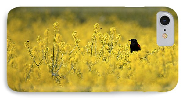Bird And The Bees Mg_9150 IPhone Case by David Orias