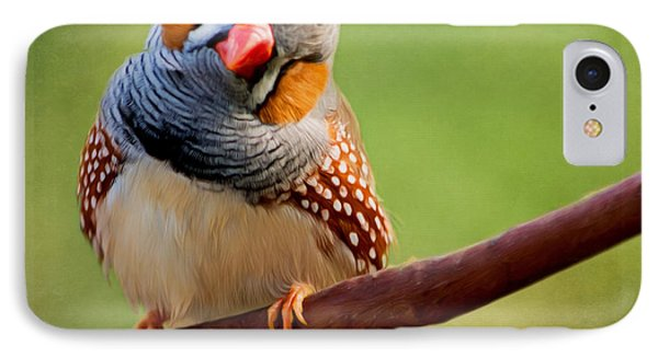 Bird Art - Change Your Opinions IPhone Case by Jordan Blackstone