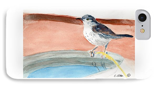 IPhone Case featuring the painting Bird Bath by C Sitton