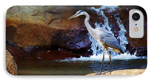 IPhone Case featuring the photograph Bird By A Waterfall  by Sarah Mullin