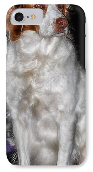 Bird Dog Beauty IPhone Case by Toma Caul