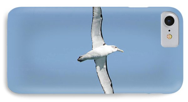 Arbornos Flying In New Zealand IPhone Case by Loriannah Hespe