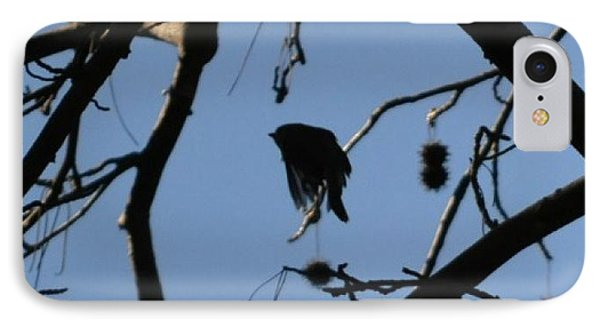 IPhone Case featuring the photograph Bird In Flight by Tara Potts