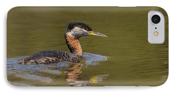 Bird In Pond IPhone Case