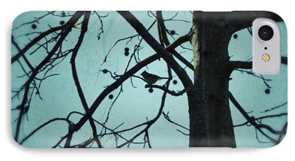 IPhone Case featuring the photograph Bird In Tree by Tara Potts