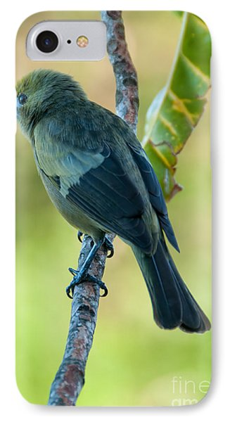 Bird IPhone Case by Marion Galt