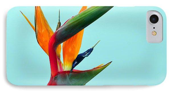Bird Of Paradise Against Aqua Sky IPhone Case