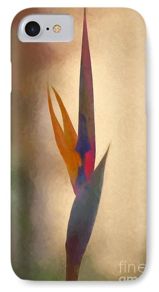 Bird Of Paradise Oil Painting IPhone Case by Heinz G Mielke