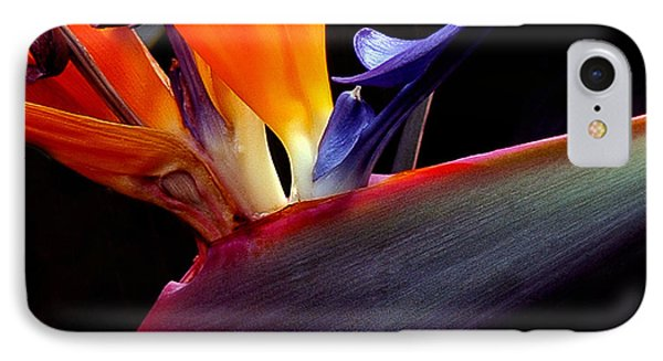 Bird Of Paradise - South African Native  IPhone Case