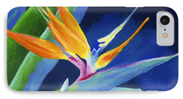 Bird Of Paradise IPhone Case by Stephen Anderson