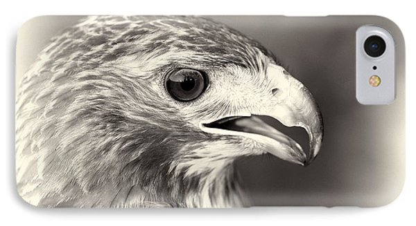 Bird Of Prey IPhone 7 Case by Dan Sproul