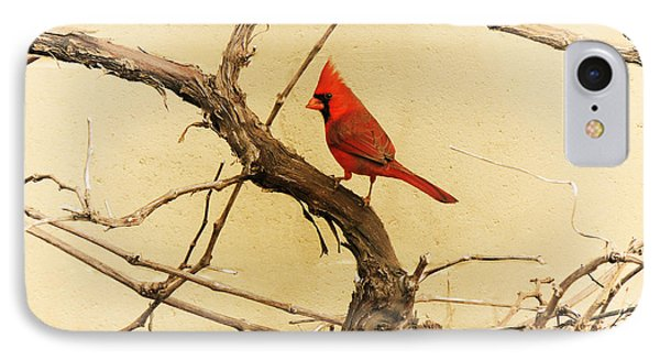 IPhone Case featuring the photograph Bird On A Vine by Jayne Wilson